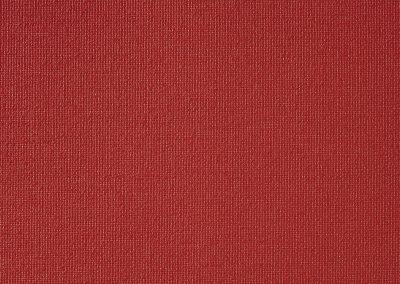 VIBE PLAIN RED