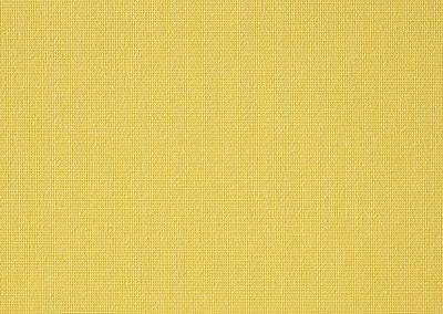 VIBE PLAIN SUNSHINE