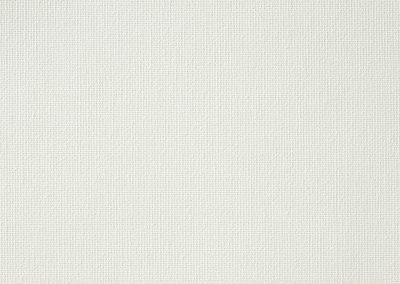 VIBE PLAIN WHITE
